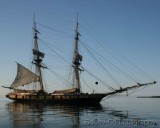 Nautical Themes