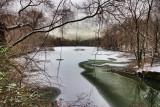 87  Larchmont Reservoir