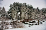 84  Park, Armonk
