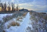 81  Path, Marshlands, Rye
