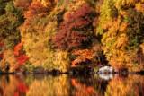 *184, Silver Lake, White Plains