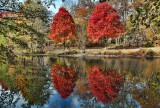 182, Lake Reflections, Bronxville