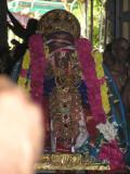 sarvadhari_tn_kanchi