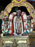 Parthasarathi - MM sattrumarai Evening purappadu.jpg