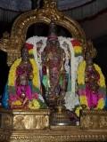 Parthasarathy purappadu during peyazhwar sattrumarai.jpg