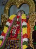 Mylapore Adikesavan sannadhi Manavala mAmunikAl on sattrumarai day.jpg