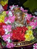 Thavazh Krishnan (Maa Madhalai)