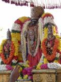 Thiruvallikeni - Parthasarathi - Rathasapthamai purappadu2.jpg