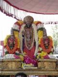Thiruvallikeni - Parthasarathi - Rathasapthamai purappadu3.jpg