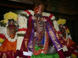Devanathan thirukkolam during Thirumozhi Saatrumurai.JPG