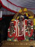 varadar davanOtsavam evening purappadu.jpg