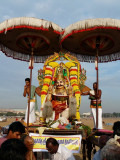 ThiruvenkatamudayAn from Egmore at mAsi magam.jpg