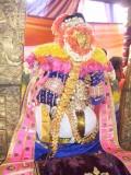 6th day venugopalan Thirukolam_pinnazaghu2.jpg