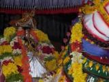 Gudhirai Vahanam2.jpg