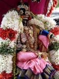 thamar uganda parthasarathi in nAcchiyar thirukOlam - Kids vahanam (Large).JPG
