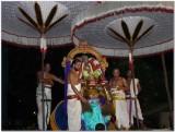 Parthasarathi on Hanumantha vAhanam.jpg