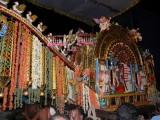 Theerthavari day - evening - Partha in kannadi pallaku2.JPG