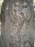 vastra-apaharanam