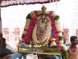 Periya Jeeyar at His sannidhi entrance after morning purappadu.JPG