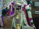Sri Sadagopan Bahumaanam to our Acharya Saarva Bhouman.JPG