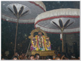 Manavala mAmunikal utsavam - Parthasaraty purappadu - deepavali day2.JPG
