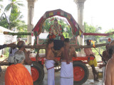 NaathaMunigal-6th day Purappadu Morning.jpg