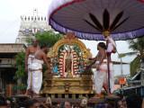 1st day Narasimhar on dharmAdhi peedam during purappadu.JPG