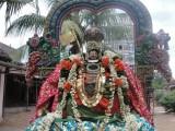 Sottai Kulathu Arasar on 2nd Day Purappadu.JPG