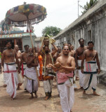 Processsion of Tirumanjana Theertham Tirunakshatram day.JPG