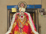 Yaamunaachaar on Tirunakshtra day.JPG