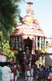 Perumal Thiruther Utsavam 9th Day .JPG