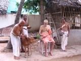 Blessed little calf, born at poundarikapuram andavan ashramam and receiving acharyan's kataksham everyday.jpg