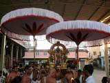 2010thiruvallikenithirunakshatra_utsavam