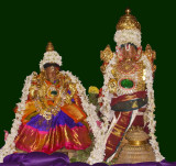 Annan_Perumal_Thirumamagal_Thayar_serthi6.jpg