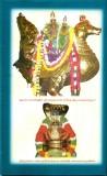 PATHIRIGAI_-_PAGE_050005.JPG