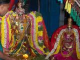 Selvatthan serai Emberumaan- 6th Day Purappadu.jpg