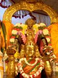 Masi Maham-Sri Parthasarathi in Garuda sevai1