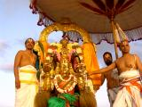 Masi Maham-Sri Parthasarathi in Garuda sevai2