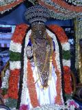 Sri Parthasarathi during Pattiulathal.JPG