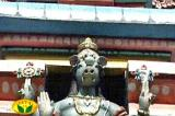 Sri varahasvAmy adorning the vimAnam