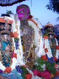 Parthasarathi after thiruther.JPG