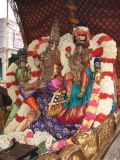8th day Morning - Lakshmi Narasimhar Thirukkolam2.JPG