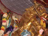 Azhagiya singar on Gudirai vahanam.JPG