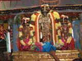 03-Sri PArthasArathy about to enter Theppam.jpg