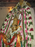 Garudasevai of Thadalan on 13th May 08.JPG