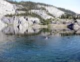 Og Lake dip