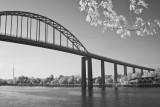 Chesapeake & Delaware Canal Bridge