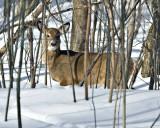 Weekly Pics Jan 22-28, 2011