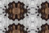 Snow Board #2