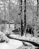 Snow Lined Walking Trail